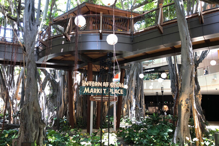 Banyan Tree House New Sign