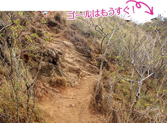 カイルア/ピルボックス・トレイル感動の景色に出会うハイキング、ラニカイ・ピルボックス・トレイル