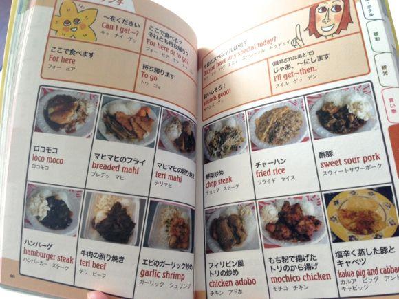 guidebook4