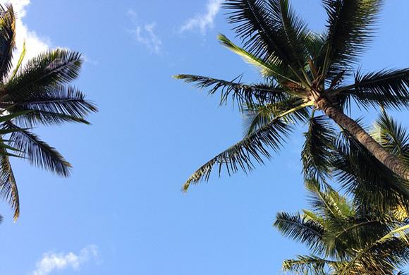 hawaii-801293_640