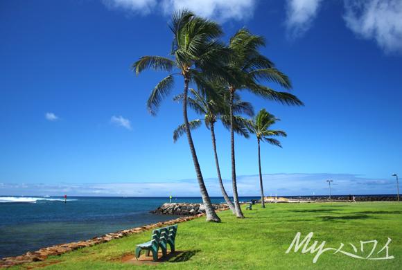 ala-moana-beach-park