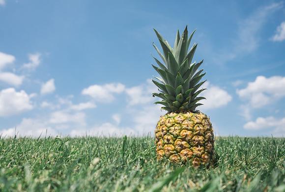 pineapple-867245_640