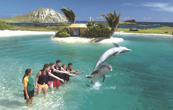 sealifepark