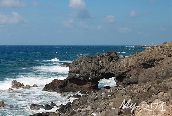 武蔵丸光洋の画像 p1_16