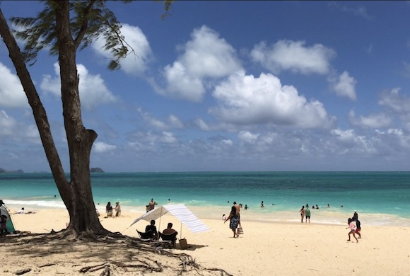 ハワイ、夏休み