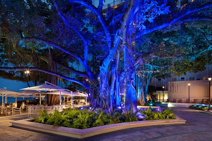 モアナ サーフライダー、ハワイ、ワイキキのホテル