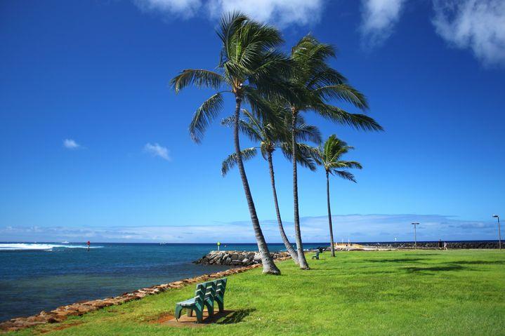 ハワイに関するとんでもない質問