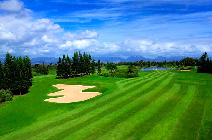 ハワイプリンス・ゴルフ