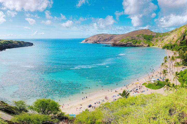 平成最後の年末、珊瑚礁に有害のサンスクリーン禁止法