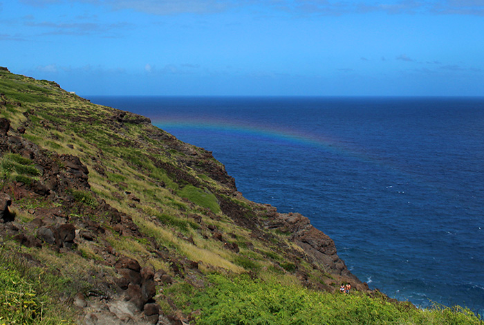 ハワイ、飛行機墜落事故