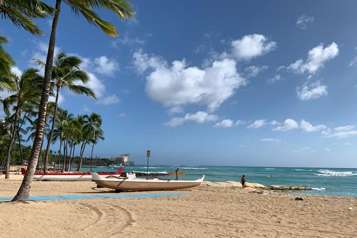 コロナ ハワイ