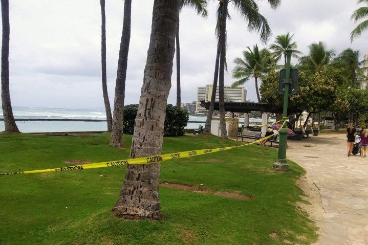 ハワイ の コロナ ウイルス